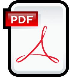 Скачать PDF файл